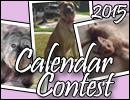 2015 Calendar Contest Widget