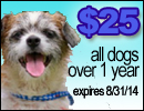 25 Dollar Dogs Widget Ad