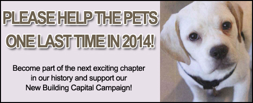 End of Year Appeal_Capital Campaign