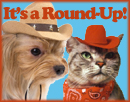 Texas Roundup Widget Ad