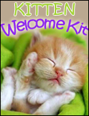 Kitten Welcome Kit