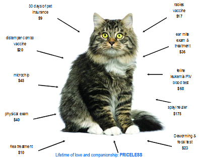 pick your purrfect price diagram the humane society of harford county rh harfordshelter org