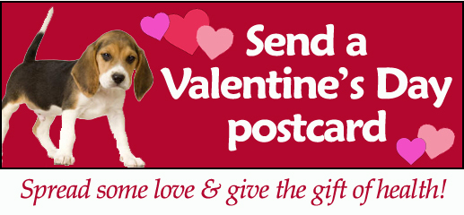 Send a Valentines Day postcard – Valentines Day Post Cards