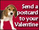 Send a Valentine's Day Postcard