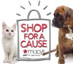 Shop for a Cause Featured Image