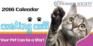 "2016 ""Make Your Pet a Pin-Up"" Calendar Contest"
