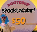 Dogtober Spooktacular Featured Image