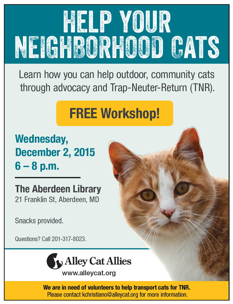 alley cat allies flyer