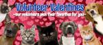 Volunteer Valentine_February 2016