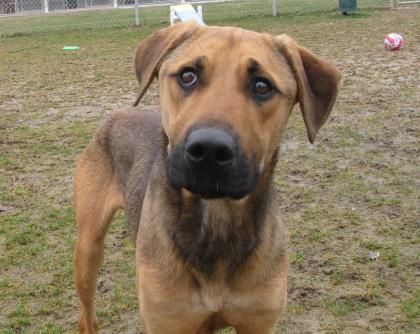 UNSER, 4-YEAR-OLD MALE