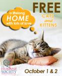 free-felines_oct-2016