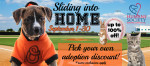 Slide into Home-Homepage Rotator