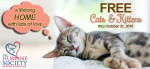 free-cats-kittens_oct-2016