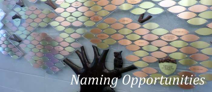 Naming Opportunities The Humane Society Of Harford County