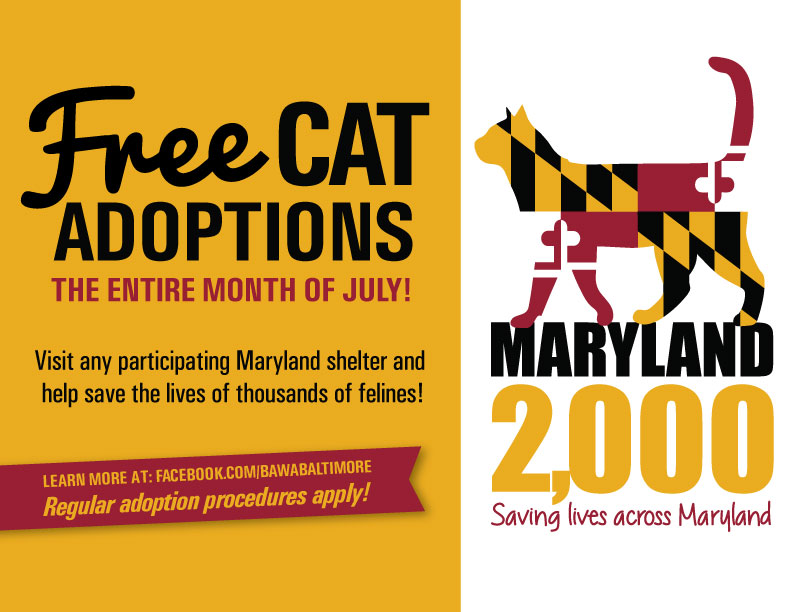 The Humane Society Of Harford County Joins Race To Save Lives Of