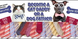 Become a Cat Daddy or a Dog Father