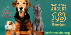 Humane Society of Harford County Waives Adoption Fees to Clear the Shelters on August 18
