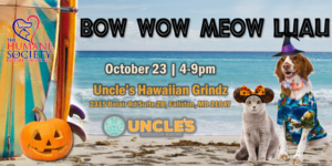 Bow Wow Meow Luau