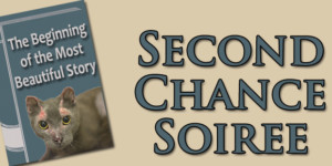 Second Chance Soiree