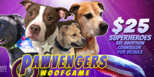 PAWVENGERS: WoofGame