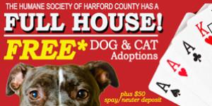FREE Dog & Cat Adoptions