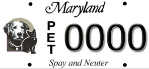 Spay Neuter License Plates