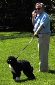 Executive with Dog