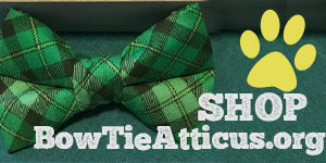 Bow Tie Atticus Give-Back