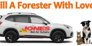 Fill A Forester